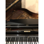 Steinway&Sons B - 211 Angioletto